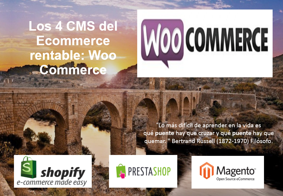 WordPress + Plugin Woocommerce ideal para avanzar Ecommerce pequeños y medianos con número de productos disponibles limitados y aspiraciones SEO.