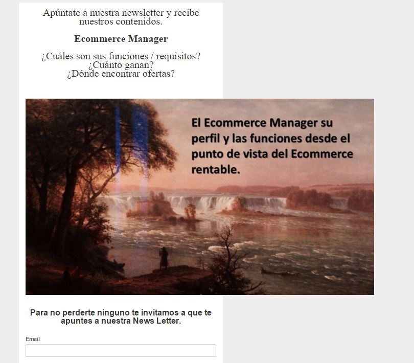 Ecommerce manager