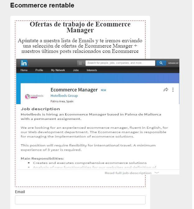 Ecommerce Manager senior